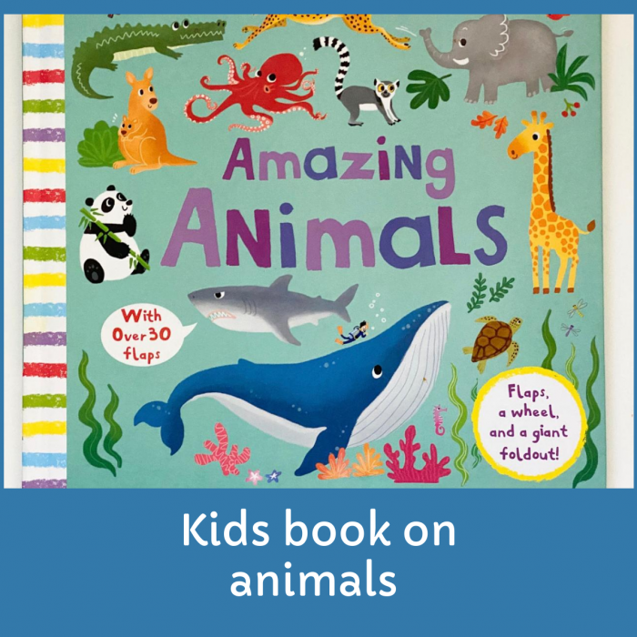 Kids Book Review- Amazing Animals