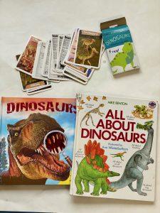 Dinosaur flash cards